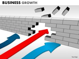Business Growth ppt 18