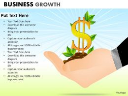 Business Growth ppt 1