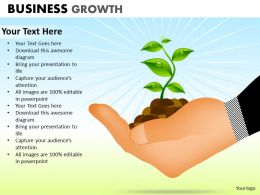 Business Growth ppt 2