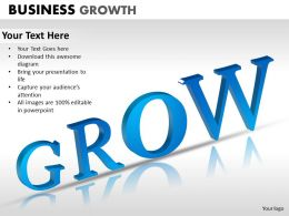 Business Growth ppt 6