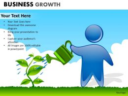 Business Growth ppt 8