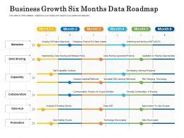 Business Growth Six Months Data Roadmap