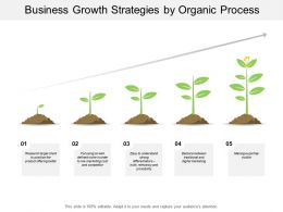 Business Growth Strategies By Organic Process