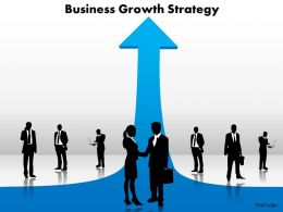 business_growth_strategy_Slide01