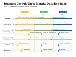 Business Growth Three Months Data Roadmap