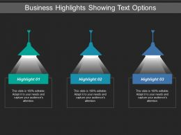 Business Highlights Showing Text Options