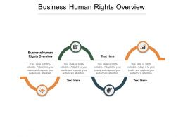 Business Human Rights Overview Ppt Powerpoint Presentation Portrait Cpb