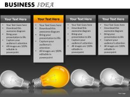 Business Idea PPT 13