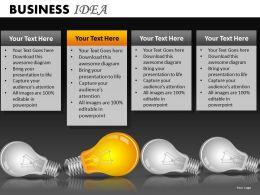 Business Idea PPT 13