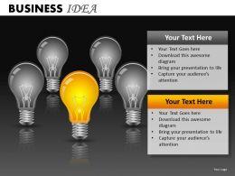 Business Idea PPT 14