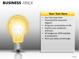 Business Idea PPT 19