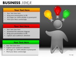 Business Idea PPT 24