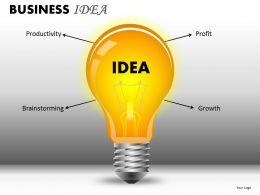Business Idea PPT 3