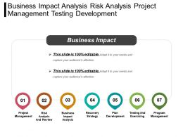 Business Impact Analysis Risk Analysis Project Management Testing Development