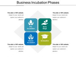 Business Incubation Phases