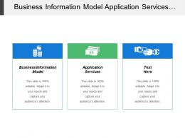 Business Information Model Application Services Costs Model Adjust Strategies