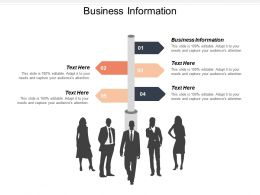 Business Information Ppt Powerpoint Presentation Icon Graphics Tutorials Cpb