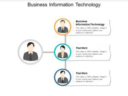 Business Information Technology Ppt Powerpoint Presentation Layouts Structure Cpb