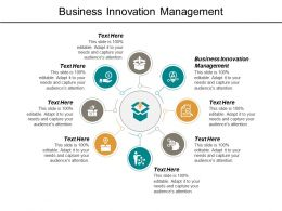 Business Innovation Management Ppt Powerpoint Presentation File Model Cpb