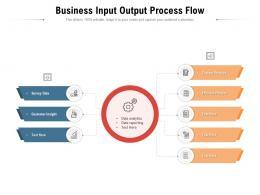 Business Input Output Process Flow