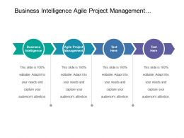 Business Intelligence Agile Project Management Content Marketing Search Social