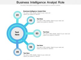 Business Intelligence Analyst Role Ppt Powerpoint Presentation Inspiration Deck Cpb