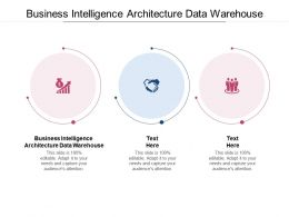 Business Intelligence Architecture Data Warehouse Ppt Powerpoint Pictures Cpb