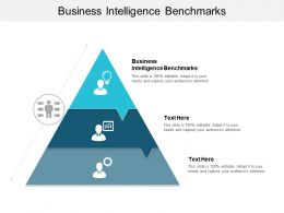 Business Intelligence Benchmarks Ppt Powerpoint Presentation Model Designs Download Cpb