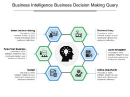 Business Intelligence Business Decision Making Query