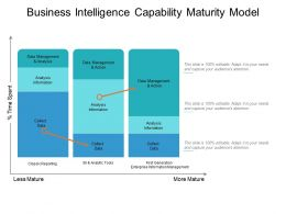 Business Intelligence Capability Maturity Model