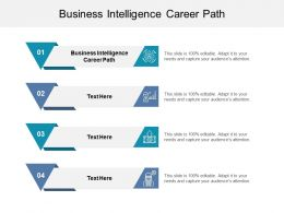 Business Intelligence Career Path Ppt Powerpoint Presentation Gallery Cpb
