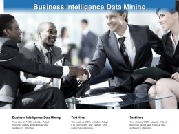 Business Intelligence Data Mining Ppt Powerpoint Presentation File Diagrams Cpb
