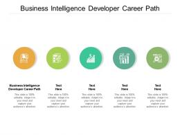 Business Intelligence Developer Career Path Ppt Powerpoint Presentation Summary Slide Portrait Cpb
