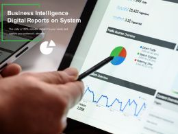 Business Intelligence Digital Reports On System