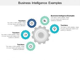 Business Intelligence Examples Ppt Powerpoint Presentation Styles Demonstration Cpb