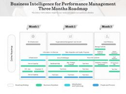 Business Intelligence For Performance Management Three Months Roadmap