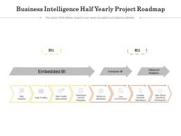 Business Intelligence Half Yearly Project Roadmap