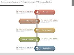 Business Intelligence In Entrepreneurship Ppt Images Gallery