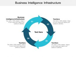 Business Intelligence Infrastructure Ppt Powerpoint Presentation Model Gridlines Cpb
