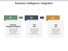 Business Intelligence Integration Ppt Powerpoint Presentation Infographic Template Show Cpb