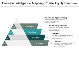 Business Intelligence Mapping Private Equity Structure Strategic Planning Cpb