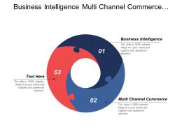 Business Intelligence Multi Channel Commerce Ecommerce Development Tools Cpb