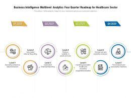 Business Intelligence Multilevel Analytics Four Quarter Roadmap For Healthcare Sector