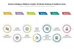 Business Intelligence Multilevel Analytics Six Months Roadmap For Healthcare Sector