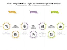 Business Intelligence Multilevel Analytics Three Months Roadmap For Healthcare Sector