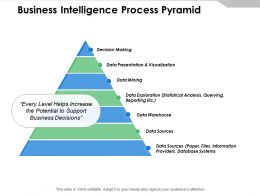 Business Intelligence Process Pyramid