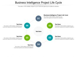 Business Intelligence Project Life Cycle Ppt Powerpoint Presentation Gallery Skills Cpb