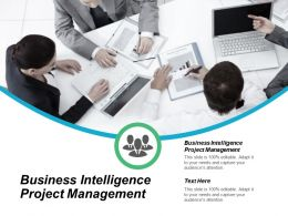 Business Intelligence Project Management Ppt Powerpoint Presentation Slides Files Cpb