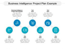 Business Intelligence Project Plan Example Ppt Powerpoint Presentation Summary Graphic Cpb