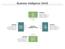 Business Intelligence SAAS Ppt Powerpoint Presentation Styles Background Cpb